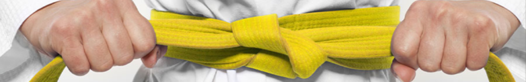 Kennismaken met Lean Six Sigma: Yellow Belt