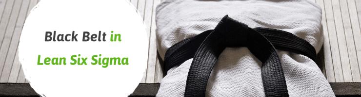 Black Belt in Lean Six Sigma
